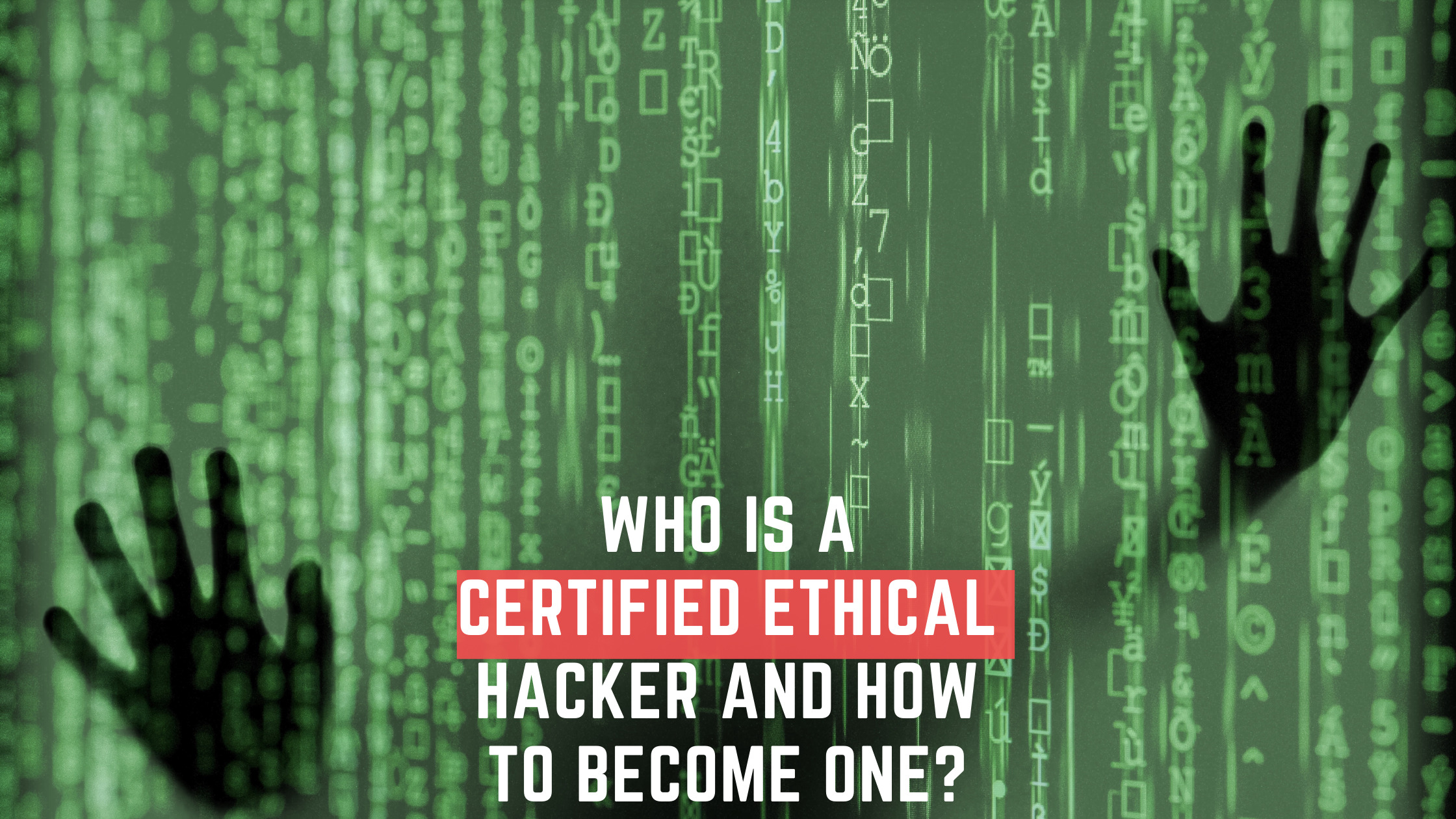 Who is a Certified Ethical Hacker and How to become One?